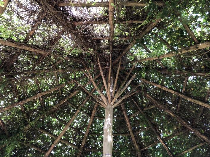 elizabeth-park-rose-gardens-west-hartford (28)