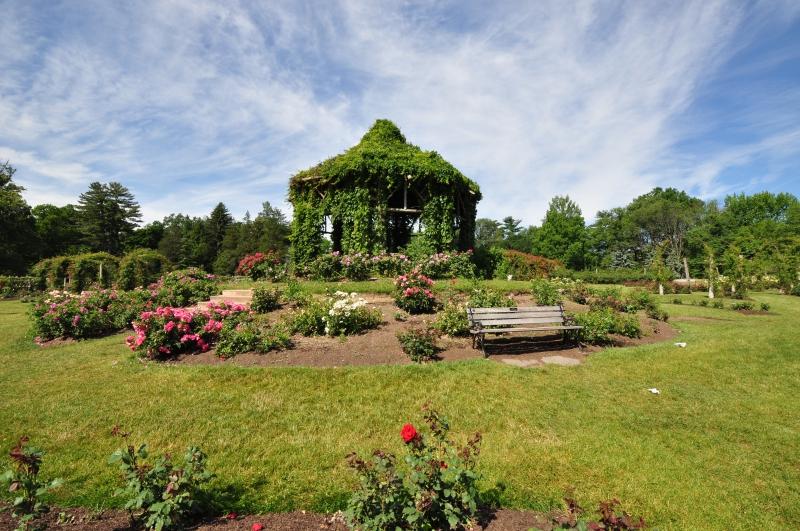 elizabeth-park-rose-gardens-west-hartford (35)