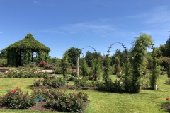 elizabeth-park-rose-gardens-west-hartford (17)