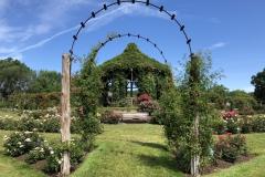 elizabeth-park-rose-gardens-west-hartford (21)