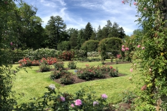 elizabeth-park-rose-gardens-west-hartford (22)