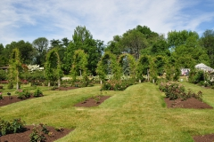 elizabeth-park-rose-gardens-west-hartford (32)