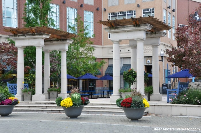 West-Hartford-CT Blue Back Square
