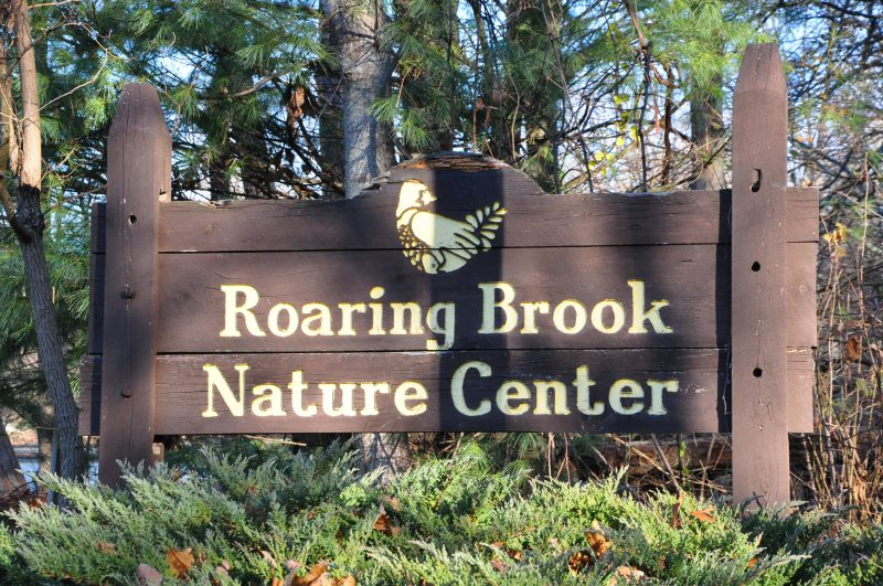 Roaring Brook Nature Center, Canton CT