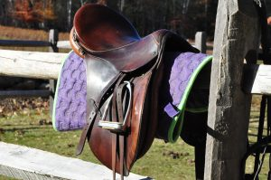 Equestrian Centers Southbury ct