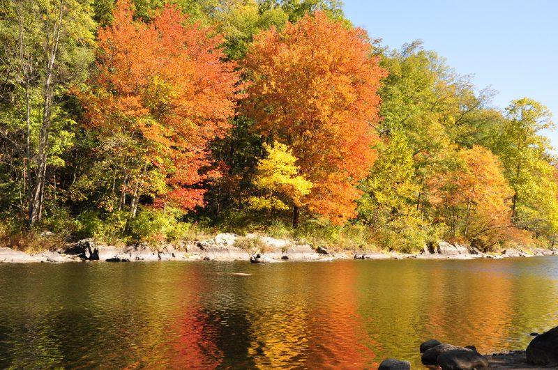 Farmington River along the bike trails