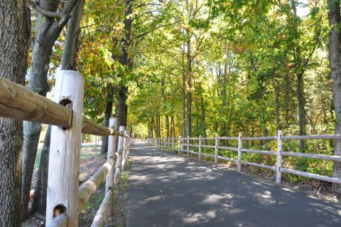 Rails to Trails Bike Path Farmington CT