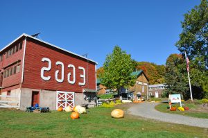 Flamig Farm Petting Zoo and Hayrides, Fresh Eggs! Nice to picnic there.