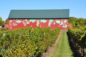Rosedale Farm Stand and Winery - Simsbury CT, Things to do in CT, realtor Simsbury,CT
