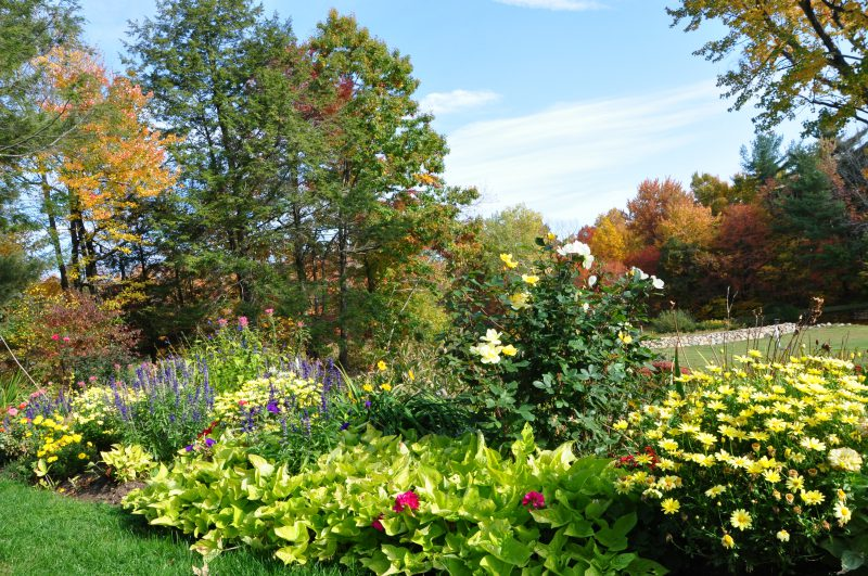 Full sun garden - West Simsbury, CT