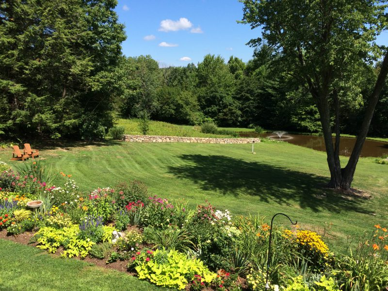 """View of yard """"AFTER"""" the clean up. Shrubs were replaced with a perennial bed of flowers, weeds and pricker bushes remove from field, grass planted and stone wall built. A pleasant view!"""