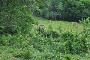 Before Field - bush hog