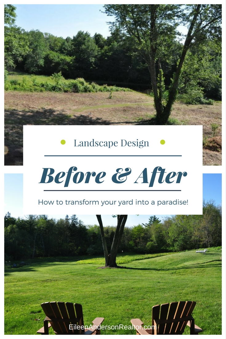 Clear the property and plant grass seed.