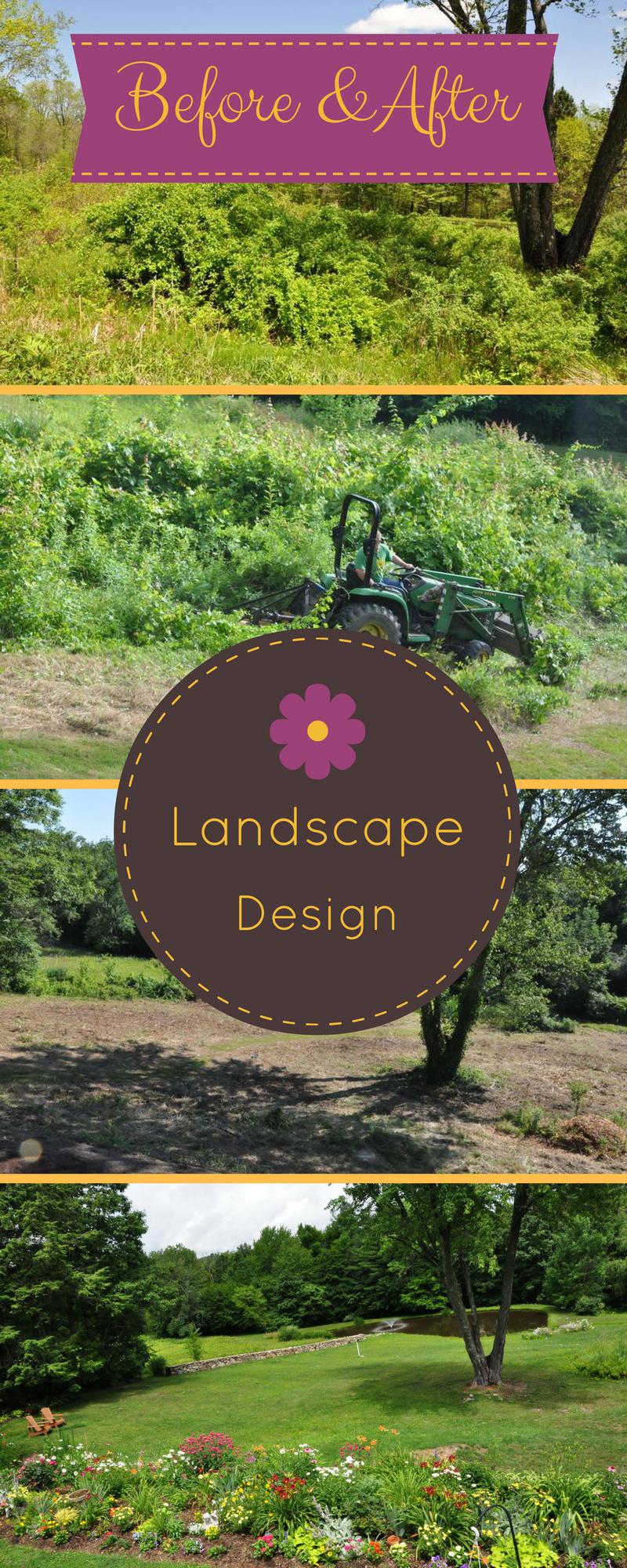 Landsccape Design Before & After, Gardening