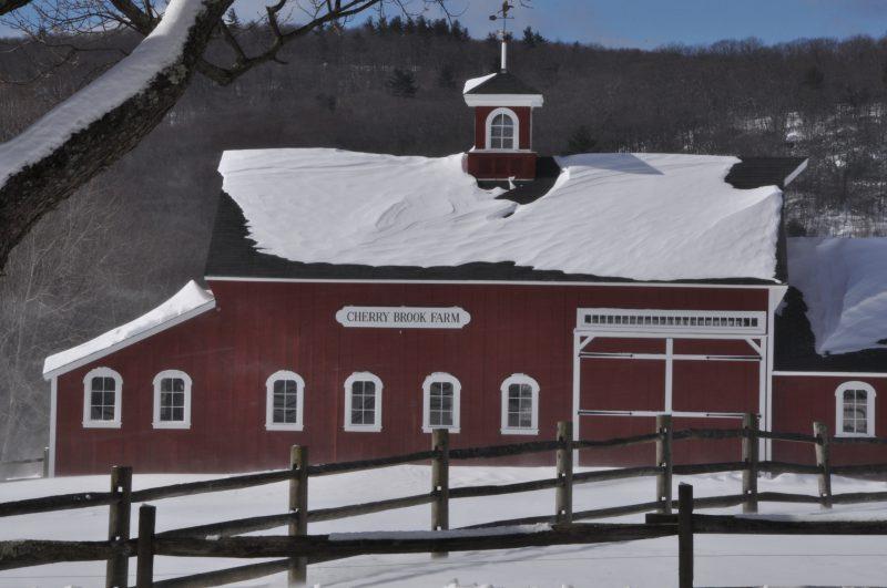 Winter Farm - Holiday