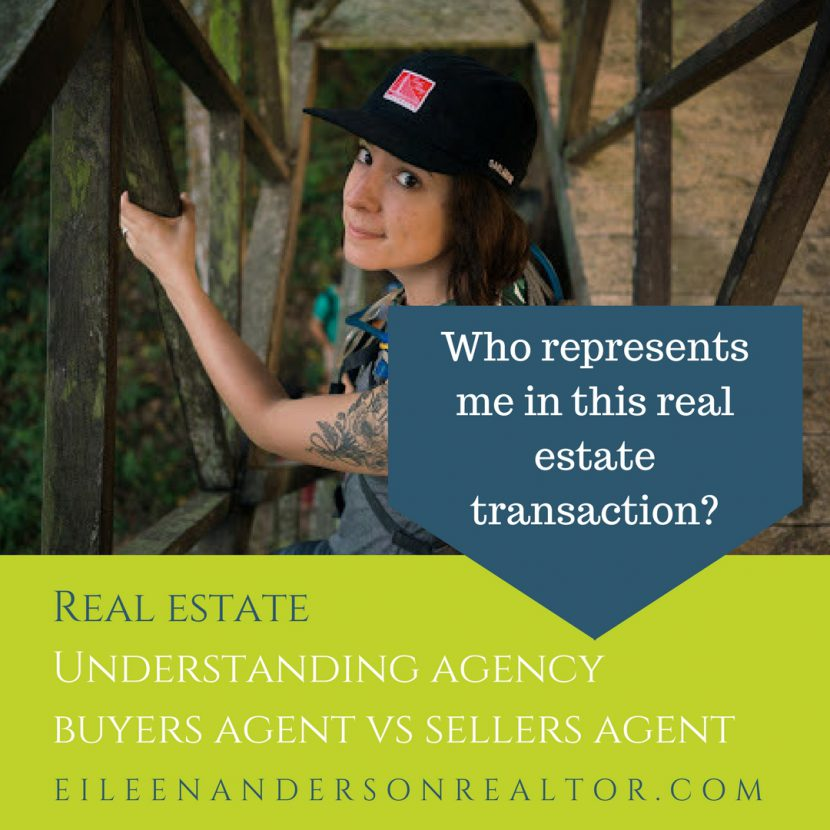 Understanding Representation, realtor, real estate