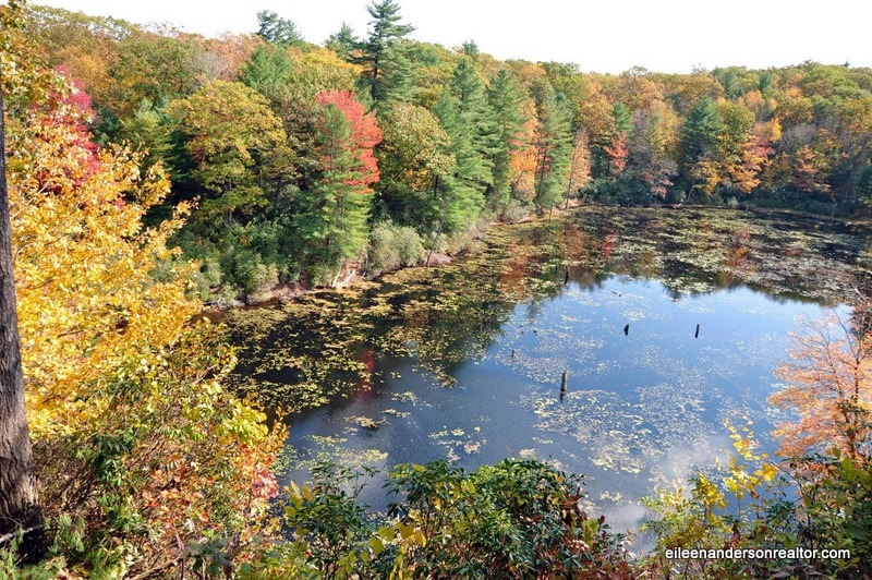 Plunge Pool Hiking White Memorial Conservation Area, things to do in CT, hiking, moutain Biking, fall foliage CT