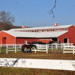 Governor's Horse Guard, Avon CT