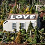Avon CT Scrub LOVE House