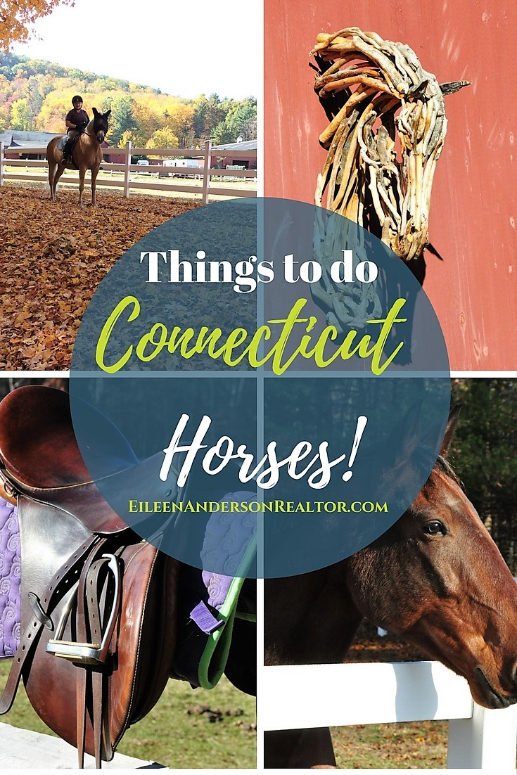 Things to do Connecticut Horses - Stables, Farmington Polo, Horseback riding.