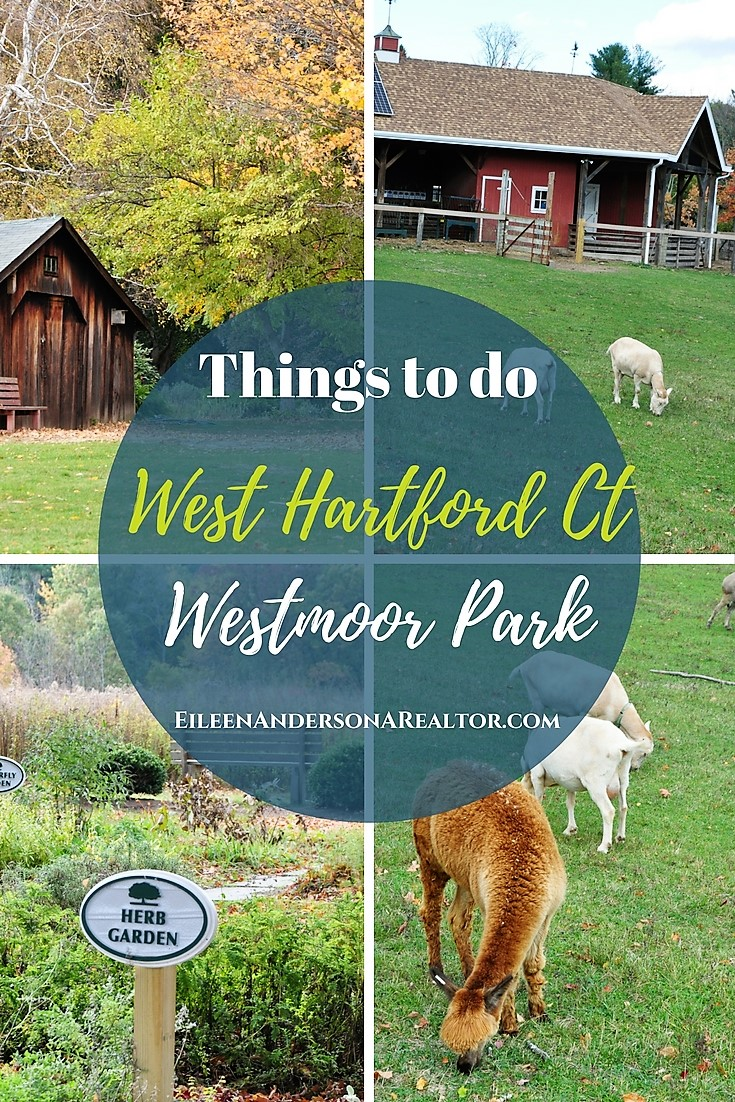 Things to do West Hartford with Kids - Westmoor Park, Farm