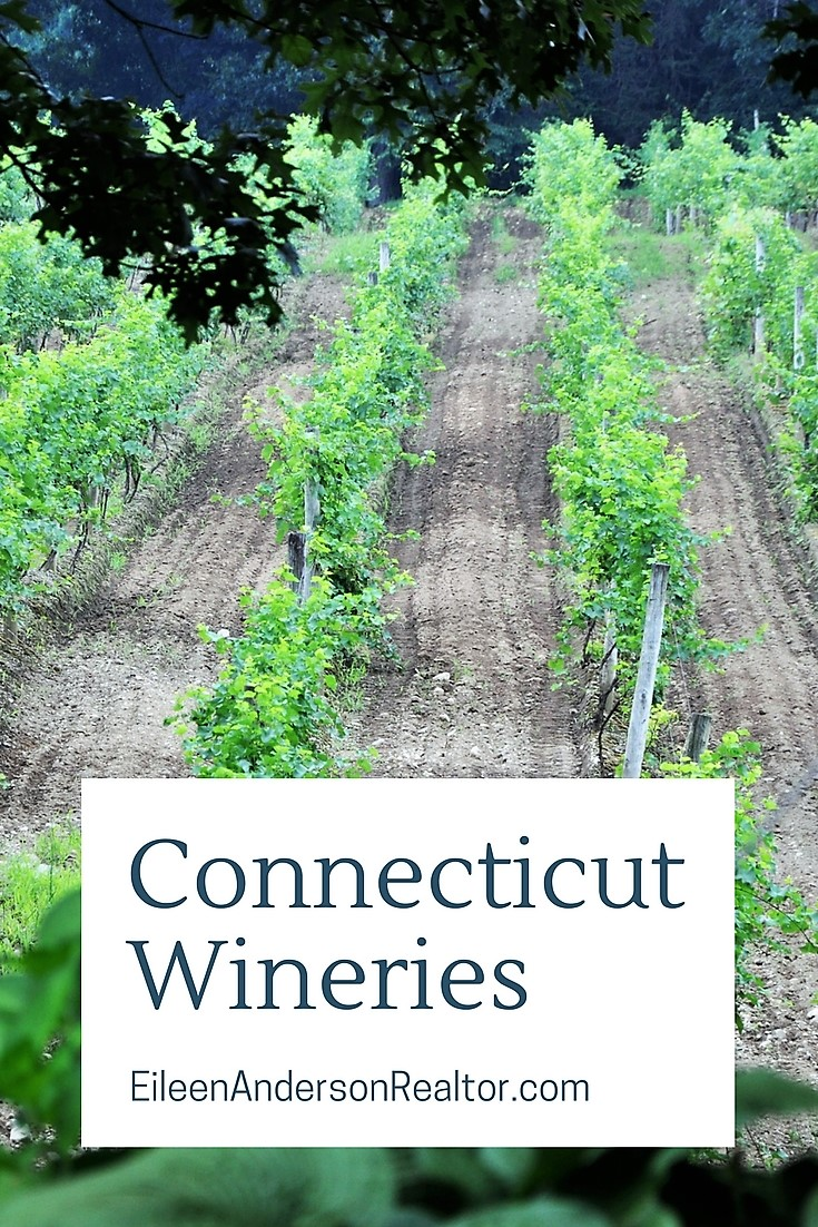 Connecticut Wineries, Visit CT, CT Wine Trail, Things to do CT