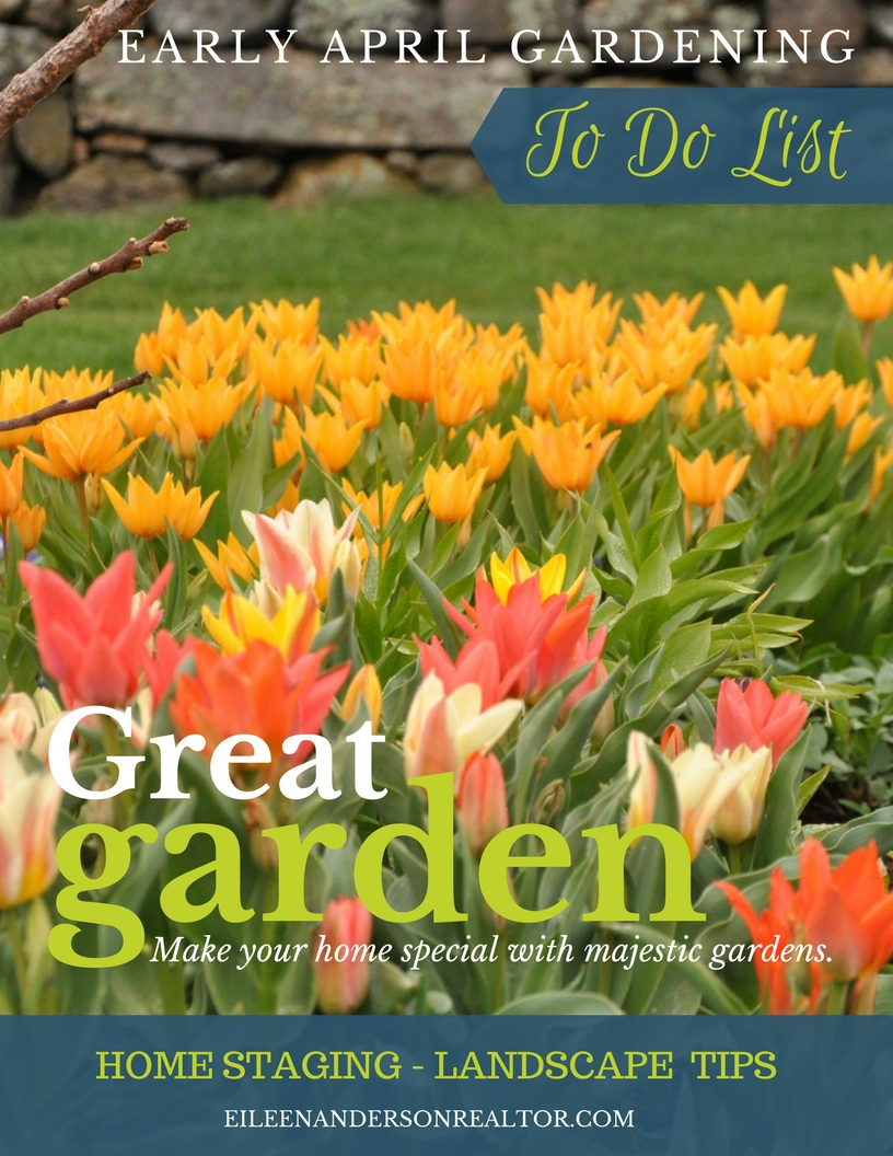 DIY, Home Maintenance, Home Improvement, Garden tips, Landscape design, Home Staging, real estate sales
