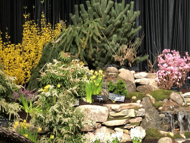 Spring blooming scrubs, water feature, stone walls, rock garden.