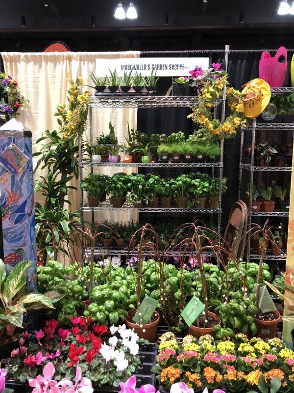 Connecticut Flower and Garden Show - Moscarillo's Garden Shoppe