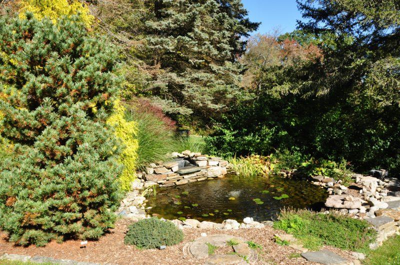 View Koi Pond 208 Westledge, West Simsbury, CT