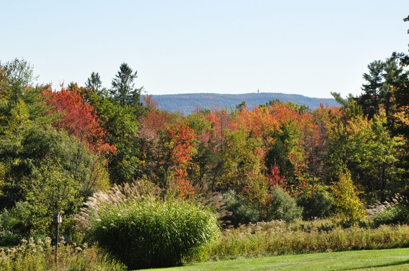 Views of Heublein Tower from deck and house 208 Westledge Rd, West Simsbury, CT