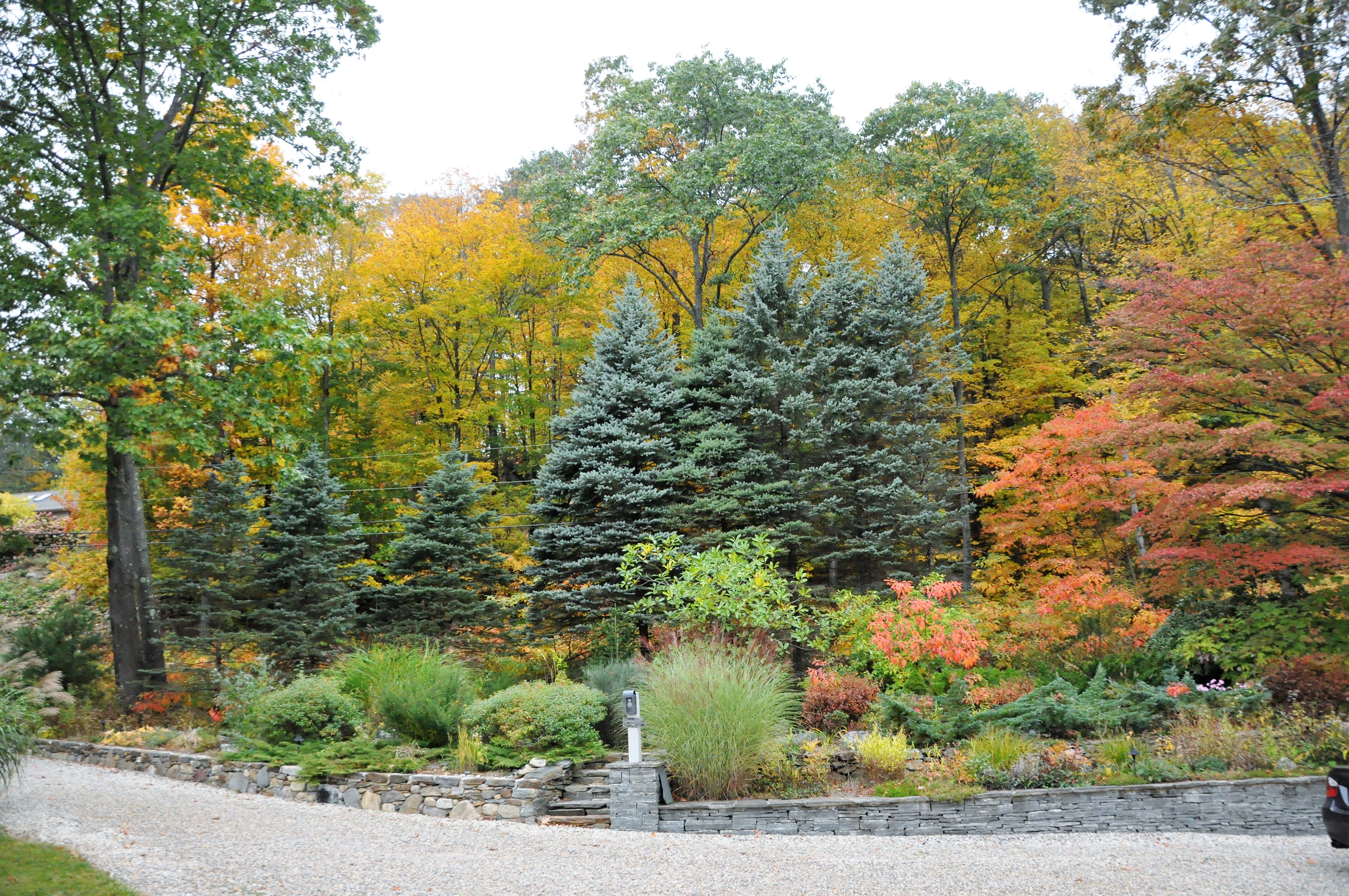 Beautiful fall landscaping, professional stone walls, ornamental trees. 208 Westledge Rd, West Simsbury, CT