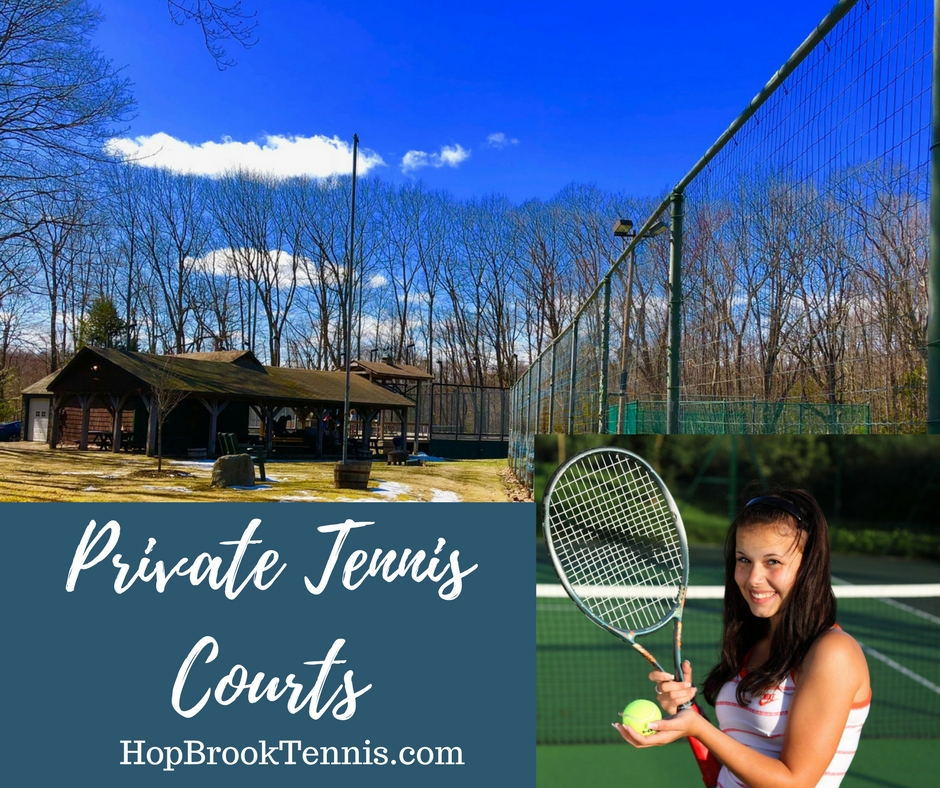 Three Har-Tru tennis courts (two lighted) and two modern, lighted paddle tennis courts