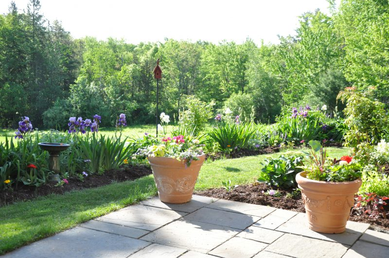 Clean your bluestone patio, add some new stone dust and get your spring containers planted.