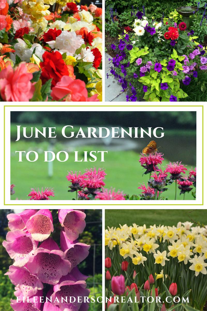 June landscaping and Gardening Checklist . Home Improvement, DIY, Landscape Design, Gardening Tips, June Gardening to do List, Home Staging, Outdoor Living, Real Estate, Shade Gardens, Lawn maintenance. #gardening #realestate
