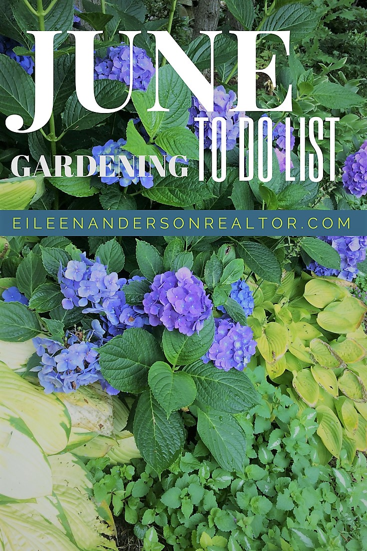 June Gardening to do list 8