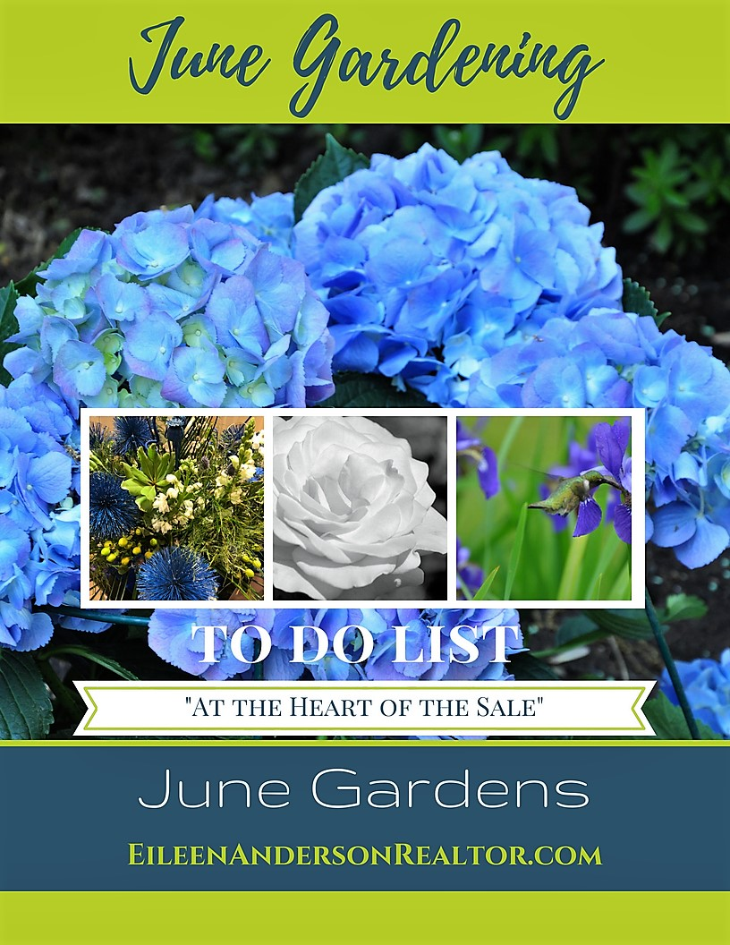 June Landscaping and Gardening Checklist