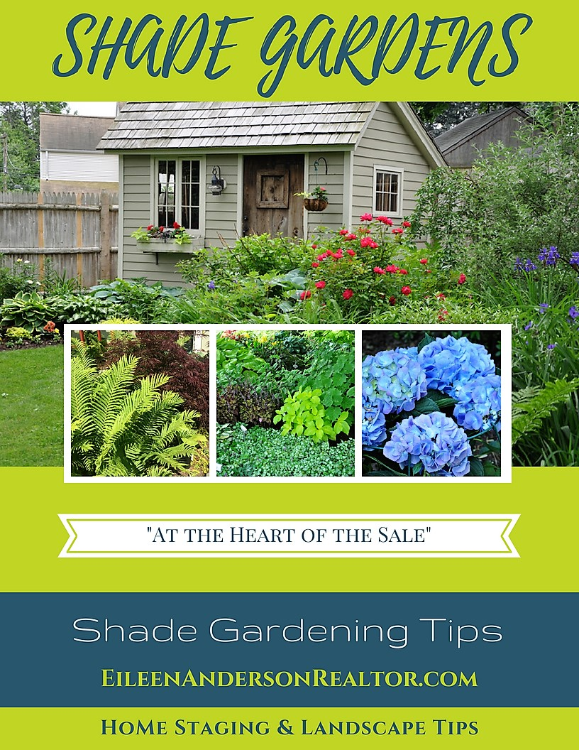 Shade-garden-ideas-tips-landscape-design