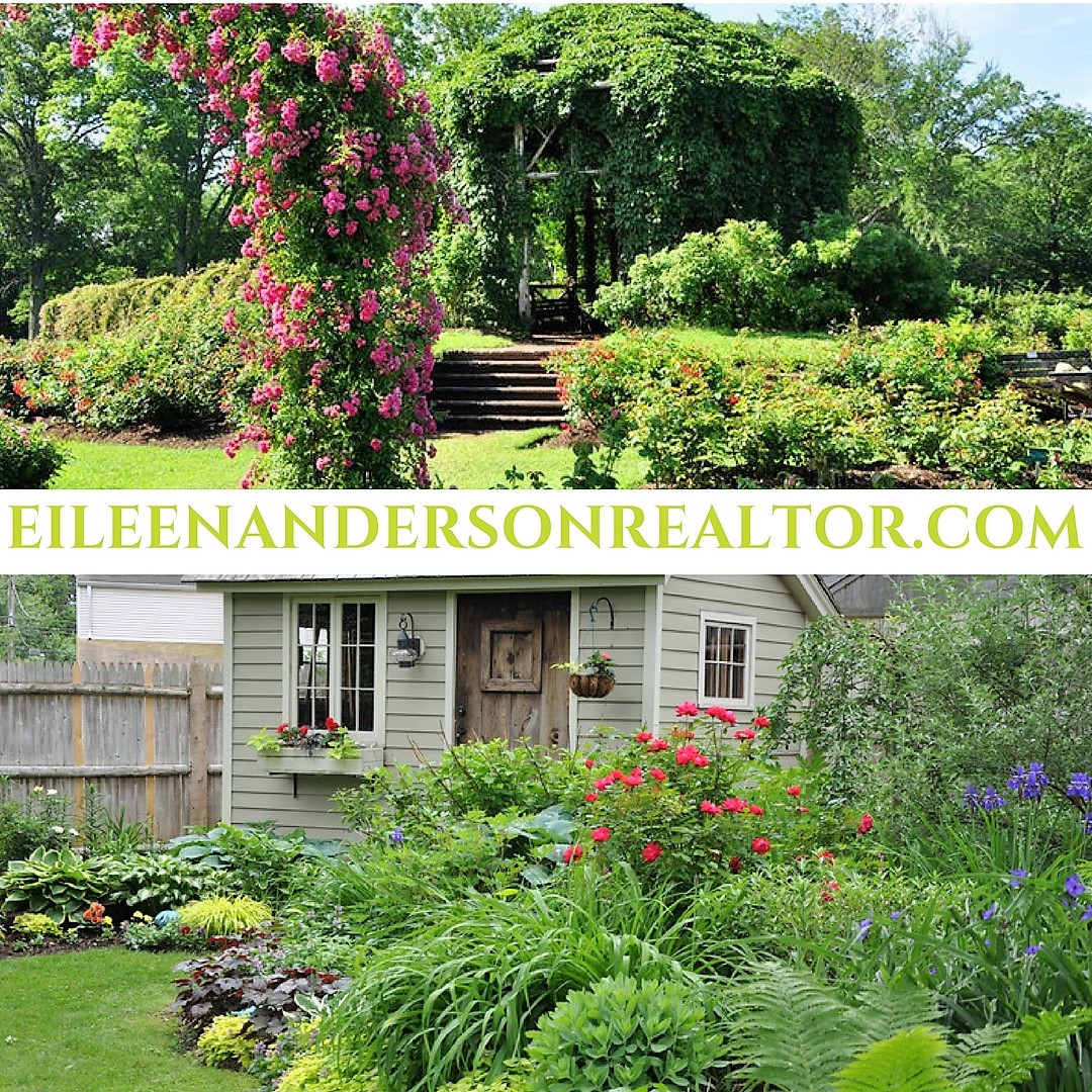 Elizabeth Park. Rose Gardens and Pond House, Summer Concerts