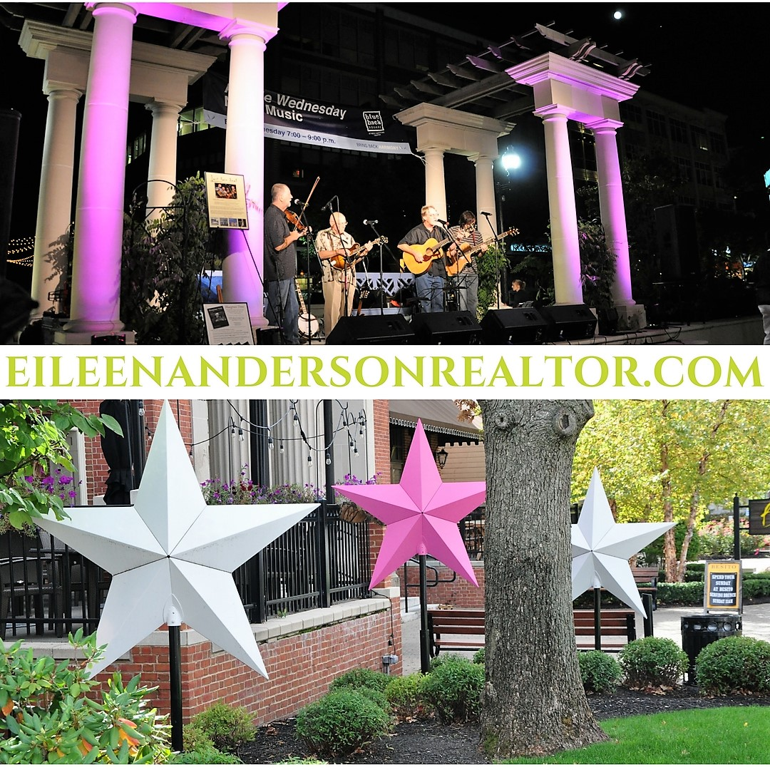 Summer Concerts at Blue Back Square, Last Fair Deal Playing