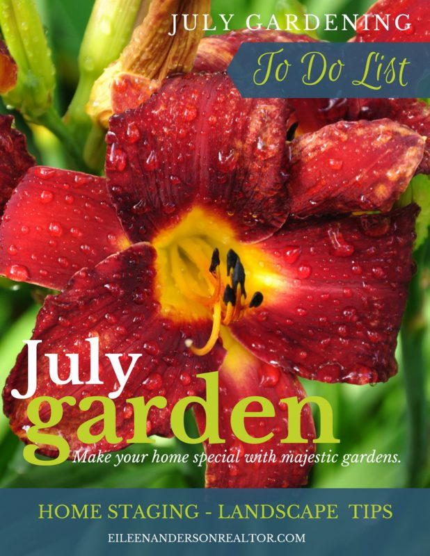 july-gardening-checklist