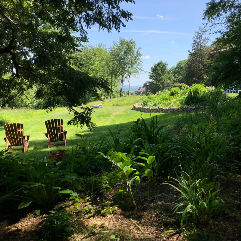 Shade Gardens, views, woodland gardne