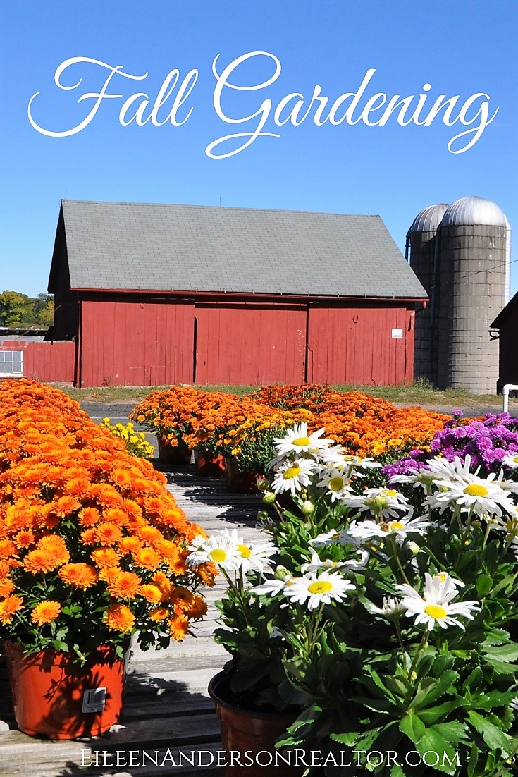 fall gardening, fall gardening checklist, realtor simsbury, home improvement, landscape design, outdoor living, home stageing