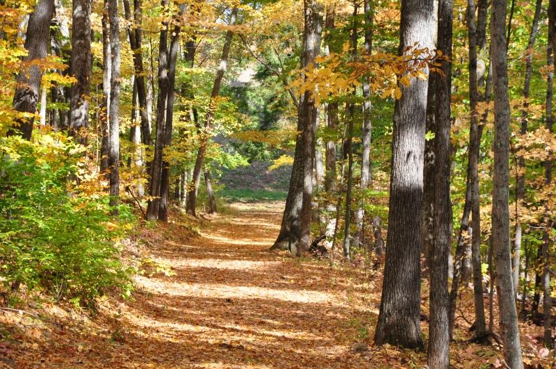 Connecticut Hiking Trails West Hartford Reservior